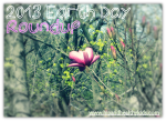 Earth Day 2013 - Small