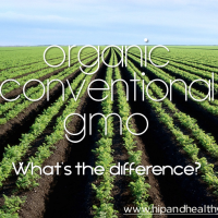 Organic/Conventional/GMO food - What's the Difference?